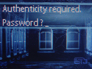 Authenticity required. Password?